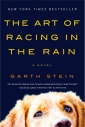 art-of-racing-in-the-rain